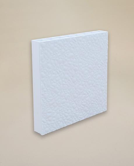 Fibercorr Lightweight Amp Moisture Resistant Wall And